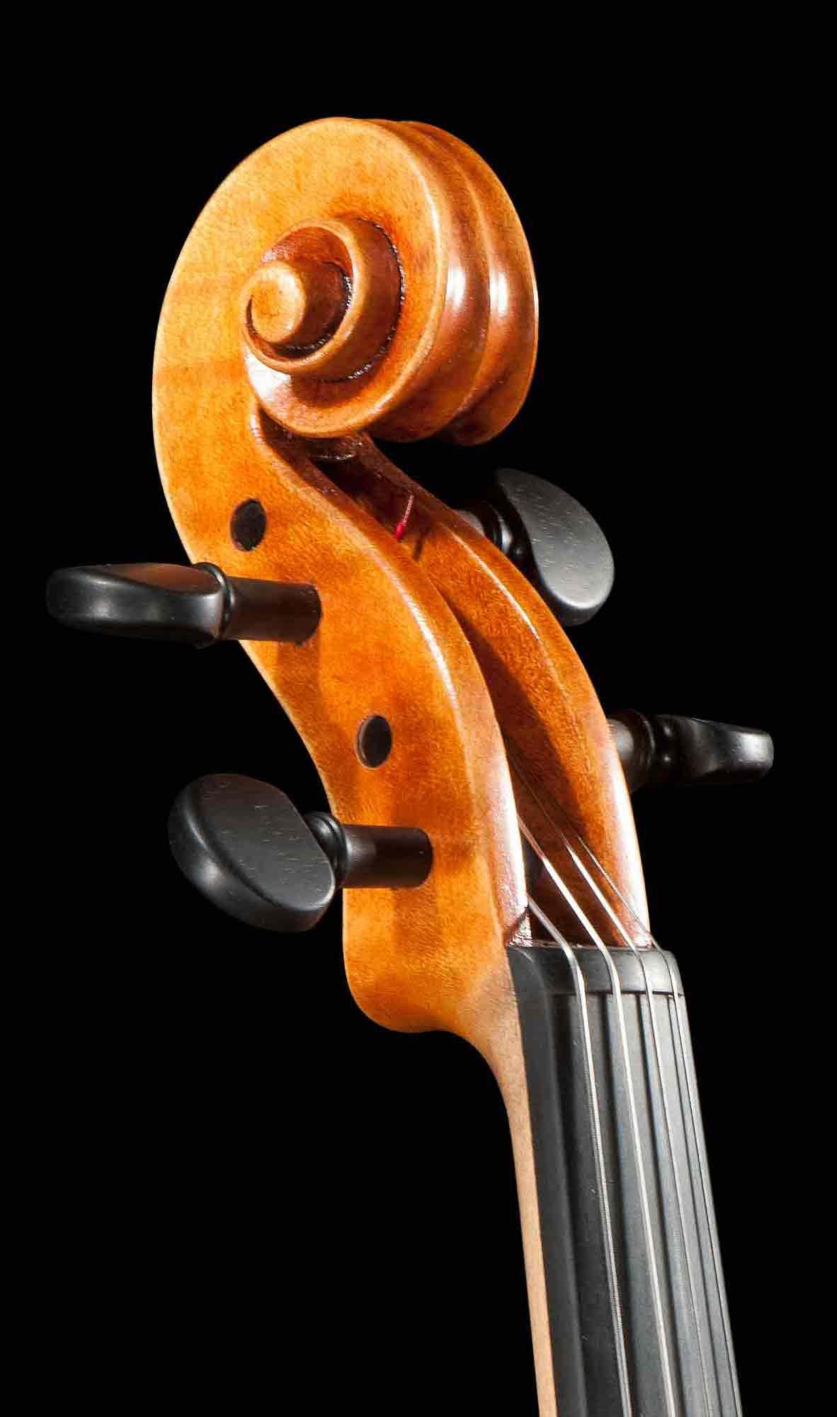 Turiner Viola, Schnecke.